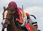 Wildcat Marie Wires Woodbine's Whimsical