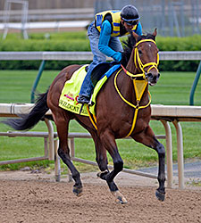 Partners Share Thrill of Breeding Derby Horse