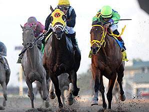 191 Nominated to Toyota Blue Grass Stakes