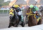 Bejarano Picks Up Derby Mount on Wildcat Red
