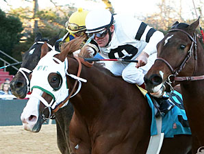 Solid Field of 10 to Contest Southwest Stakes