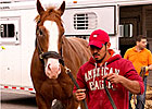 Lukas&#39; Preakness Trio Arrives at Pimlico