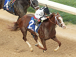 Will Take Charge wins the 2014 Oaklawn Handicap.