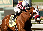 Willa B Awesome Tops Hollywood Oaks Lineup