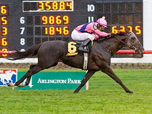 Willcox Inn Tops Field in Hawthorne Derby
