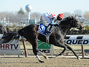 Willet wins the 2015 Interborough Stakes.
