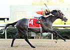 Win Willy in Top Form Entering Oaklawn 'Cap