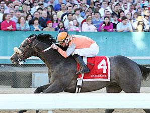 Win Willy wins the 2010 Razorback.