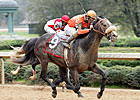 Ky Derby Trail: Win Willy Will Win Derby