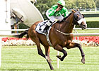 Winchester Among World's Top Turf Horses