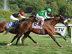 Winchester wins the 2011 Sword Dancer.