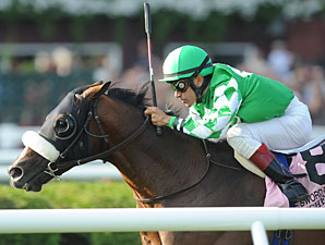 Grade I Winner Winchester Retired