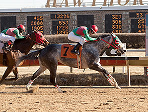 Win'em All wins the 2015 Third Chance Handicap.