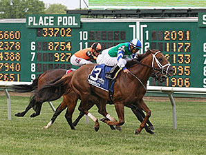 Winning Cause wins the 2015 Red Bank Stakes.
