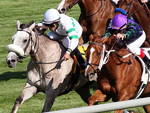 Winter Memories wins the 2011 Appalachian.