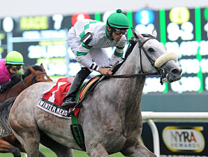 Winter Memories wins the 2012 Beaugay.