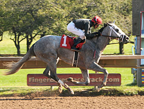 Wired Bryan Wires Field in NYB Futurity