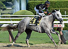 NY-Bred Wired Bryan Buzzes to Sanford Upset