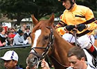 Wise Dan - Shadwell Turf Mile Highlight Video
