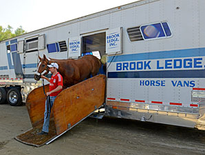 Wise Dan, Other Breeders' Cup Runners Arrive