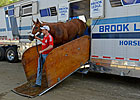 Wise Dan, Other Breeders&#39; Cup Runners Arrive
