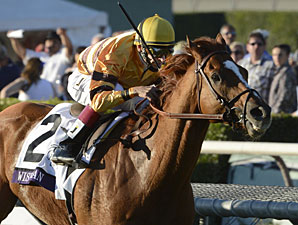 Wise Dan Works on Dirt; Options Expanded