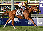 Wise Dan &#39;Ahead of Schedule&#39; for 2013 Debut