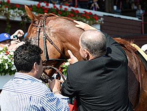 Wise Dan wins the 2014 Bernard Baruch.