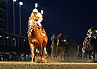 Wise Dan Impresses in Clark Handicap