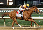 Wise Dan Gets Season Started in Ben Ali