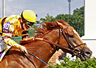 Wise Dan Preps for Keeneland's Shadwell Mile