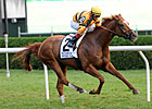 Stall, Shirreffs Gunning for Wise Dan at Spa