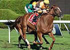 Haskin: Another Opportunity For Wise Dan