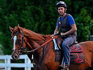 Wise Dan Turns in First Breeze Since Surgery