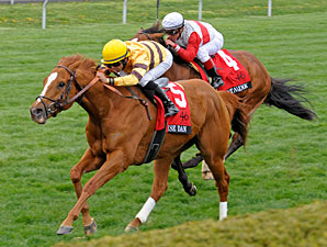 Wise Dan Triumphant in Maker's 46 Return