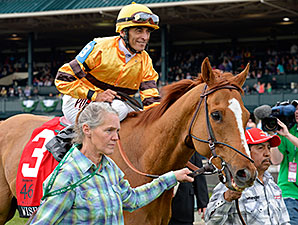 Wise Dan Drills in Company on Saratoga Dirt