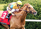 Wise Dan Fires Bullet Toward Woodford Defense