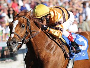 Wise Dan wins the 2010 Phoenix.