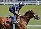 Wise Dan Works Over Oklahoma Turf