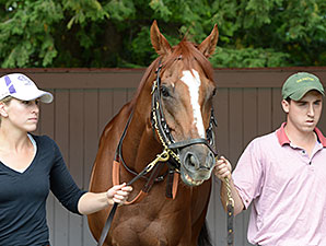 LoPresti Not Thinking About Horse of the Year