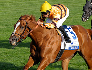 Wise Dan Rallies to Win Shadwell Turf Mile