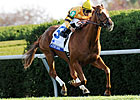 BC Mile: Wise Dan Must Run &#39;Race of His Life&#39;