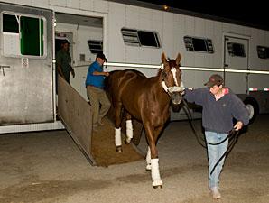 Wise Dan arrives at Woodbine on September 14, 2012.