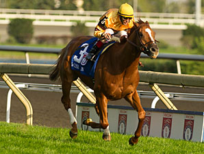 Wise Dan Runs Back in Shadwell Turf Mile