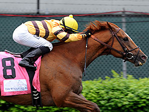 HOY Wise Dan Returns to Keeneland Tab