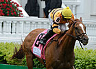 Wise Dan Pours It On i