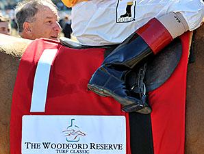 Wise Dan wins the 2014 Woodford Reserve Turf Classic.