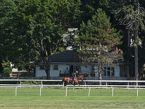 Wise Dan - Saratoga, July 18, 2014.