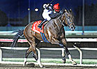 2013 Iowa-Bred Champions Announced