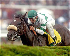 Wonder Again to Freshen Up after Diana Win
